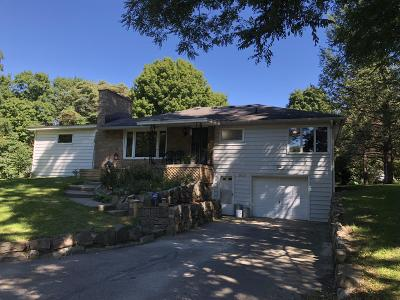 Lowell Single Family Home For Sale: 9795 36th Street SE