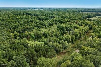 Morley Residential Lots & Land For Sale: 22470 3 Mile Rd