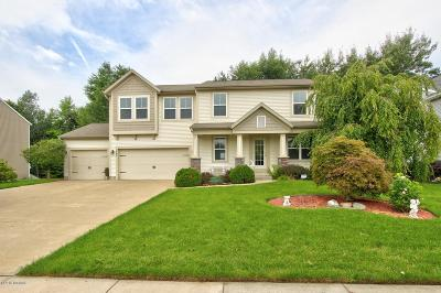 Allendale Single Family Home For Sale: 7363 Water View Lane