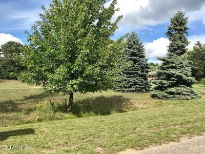 Ludington Residential Lots & Land For Sale: 1114 N Jebavy Drive