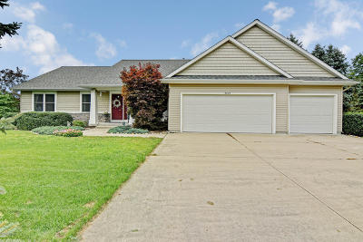Allegan County Single Family Home For Sale: 6005 River Ridge Drive