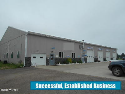 Ludington Commercial For Sale: 4990 W Progress Drive