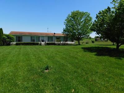 Nashville Single Family Home For Sale: 7683 S M 66 Highway