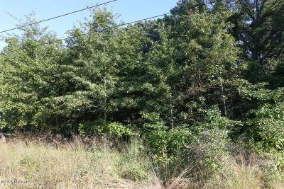 Union Pier Residential Lots & Land For Sale: 10537 Kissman Drive
