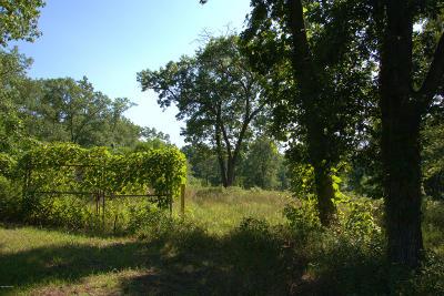 Stevensville Residential Lots & Land For Sale: Red Arrow Highway