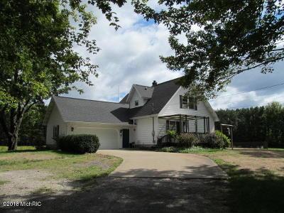 Muskegon County, Newaygo County, Oceana County, Ottawa County Single Family Home For Sale: 632 E Mt Garfield Road