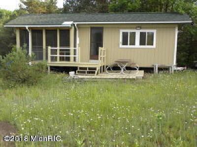 Newaygo County Single Family Home For Sale: 7807 B Comstock Avenue