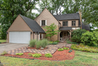 Battle Creek Single Family Home For Sale: 160 Shadywood Lane