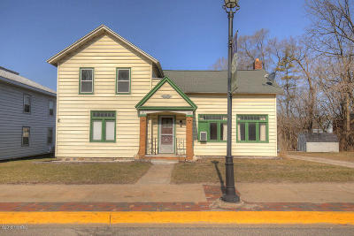 Newaygo County Single Family Home For Sale: 185 State Road