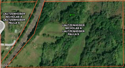 Calhoun County Residential Lots & Land For Sale: 14360 Renton Road