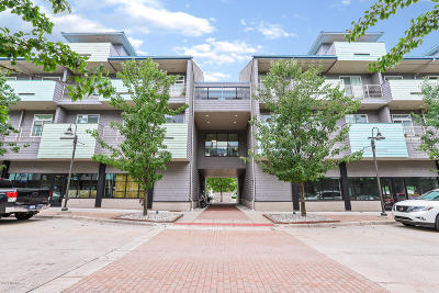 Grand Haven, Spring Lake Condo/Townhouse For Sale: 529 Miller Drive #202