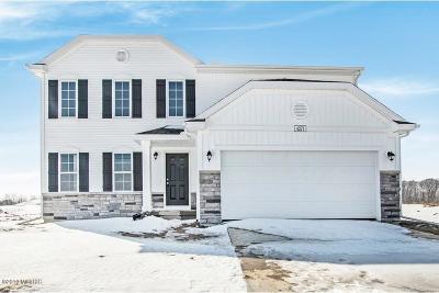 Hudsonville Single Family Home For Sale: 4271 Springhill Drive