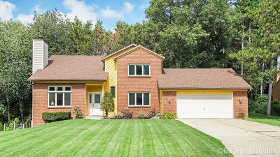 Grand Rapids Single Family Home For Sale: 2485 Pineview Drive NE