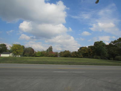 Calhoun County Residential Lots & Land For Sale: 4546 W Dickman