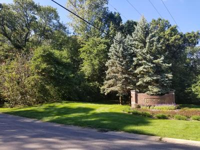 Kalamazoo County Residential Lots & Land For Sale: 6776 Northstar Avenue