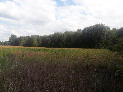 Clinton County, Gratiot County, Isabella County, Kent County, Mecosta County, Montcalm County, Muskegon County, Newaygo County, Oceana County, Ottawa County, Ionia County, Ingham County, Eaton County, Barry County, Allegan County Residential Lots & Land For Sale: 777 10th Street