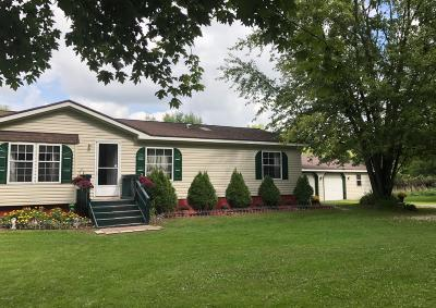 Newaygo County Single Family Home For Sale: 2299 Moore Road