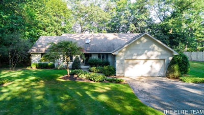 Allegan Single Family Home For Sale: 3323 Lake Drive