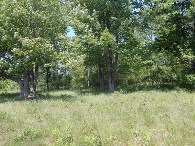 Gladwin County Residential Lots & Land For Sale: 2155 M-18