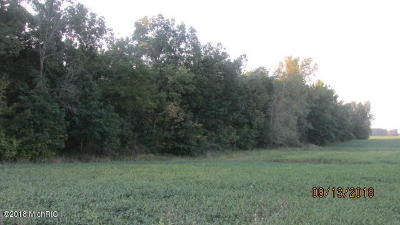 Hillsdale County Residential Lots & Land For Sale: South Road