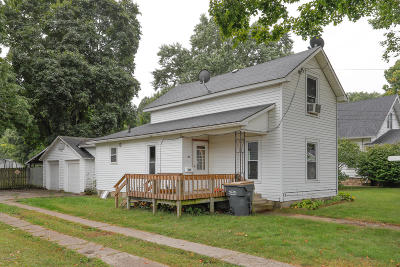 Otsego Single Family Home For Sale: 317 W Orleans Street