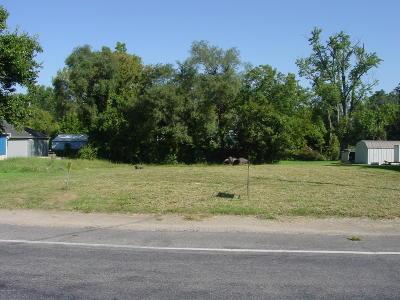 Kalamazoo County Residential Lots & Land For Sale: 2341 Lake Street