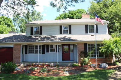 Grand Rapids Single Family Home For Sale: 1633 Millbank Street SE