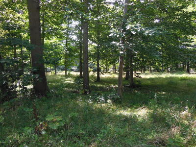 Allegan County Residential Lots & Land For Sale: Hawks Nest Drive #3