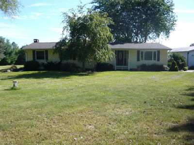 Coldwater Single Family Home For Sale: 921 Flint Road