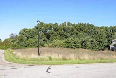 Kalamazoo County Residential Lots & Land For Sale: 5434 Coronet Street