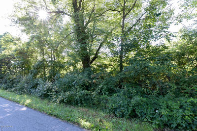 Van Buren County Residential Lots & Land For Sale: 22775 38th Avenue