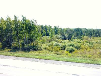 Ludington Residential Lots & Land For Sale: W Us 10