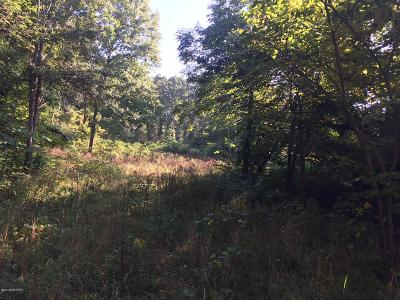 Allegan County Residential Lots & Land For Sale: A Lincoln Road