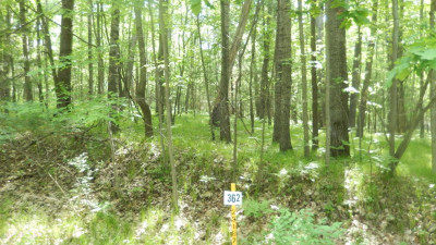 Canadian Lakes Residential Lots & Land For Sale: 8278 Highland Trail #362