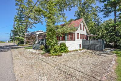 New Buffalo Single Family Home For Sale: 47104 Pine Avenue