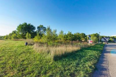 Kalamazoo County Residential Lots & Land For Sale: 5879 Nancy Ann Drive
