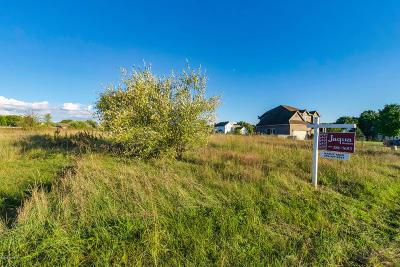Kalamazoo County Residential Lots & Land For Sale: 5910 Nancy Ann Drive