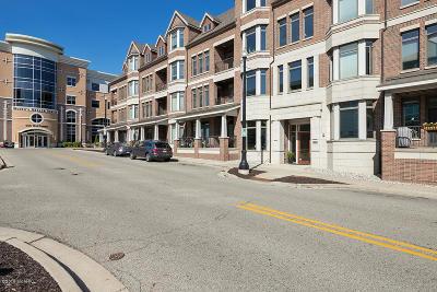 Grand Rapids MI Rental For Rent: $1,565