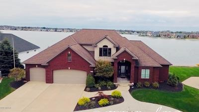 Hudsonville MI Single Family Home For Sale: $989,000