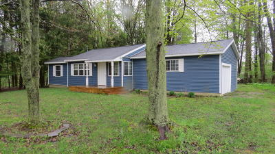 Allegan Single Family Home For Sale: 349 Minkler Lake Road
