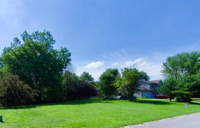 Kalamazoo County Residential Lots & Land For Sale: 503 Club View Drive