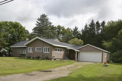 Kalamazoo County Single Family Home For Sale: 119 Blalock