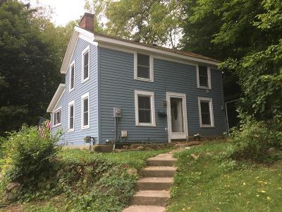 Portland Single Family Home For Sale: 608 E Grand River Avenue