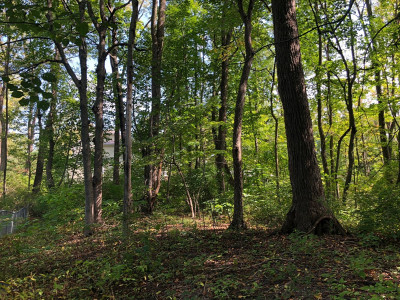 Grand Rapids Residential Lots & Land For Sale: 95 Mercer Drive SE