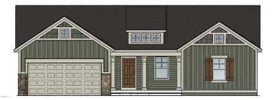 Allendale Single Family Home For Sale: 7735 Hawkin Street
