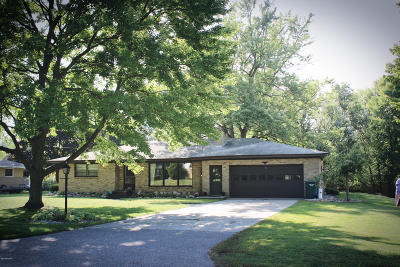 Allendale Single Family Home For Sale: 11351 Brown Avenue