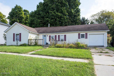 Allegan County Single Family Home For Sale: 125 Wilson Street