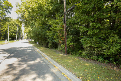 Calhoun County Residential Lots & Land For Sale: 528 N Marshall Avenue