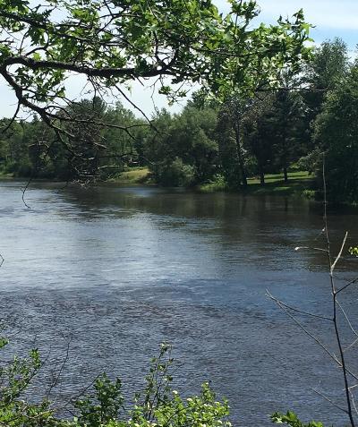 Residential Lots & Land For Sale: Lot 17 Deerpath Crossing