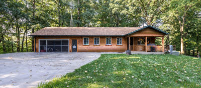 Niles Single Family Home For Sale: 880 Anderson Road